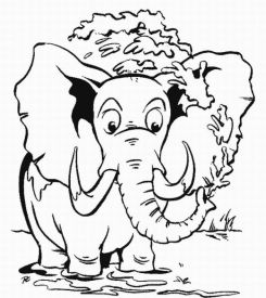 save the rainforest coloring pages - free download bokep ziddu siswa smu tasikmalaya save the